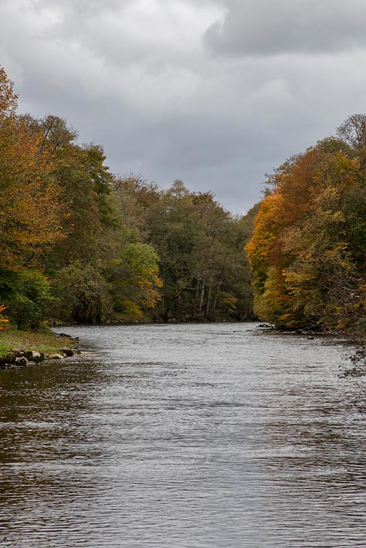 The River Tay in autumn